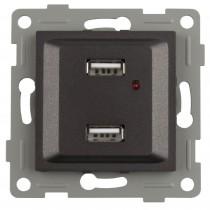 S-EMPOT.ONLEX GRAFITO DOBLE USB